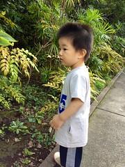 夕方散歩 (2012/10/7)
