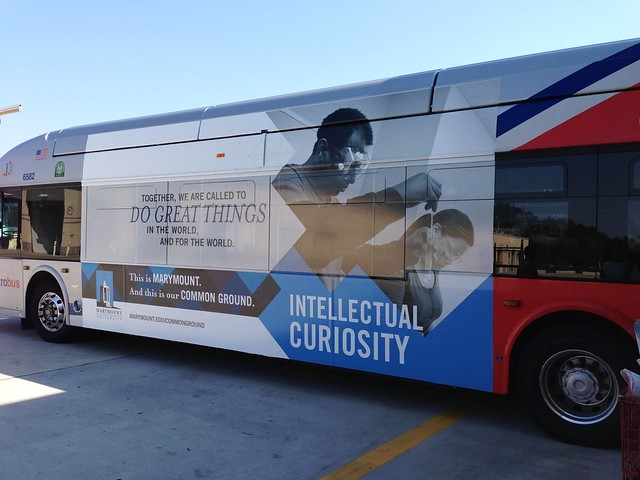 Common Ground Metro Bus - Intellectual Curiosity