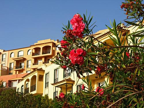 Hotel Las Olas, Concajos, La Palma
