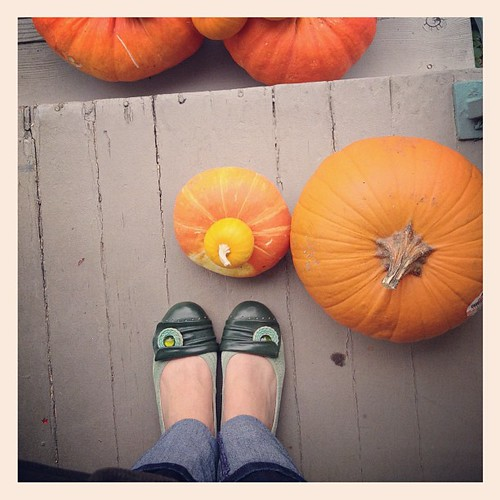 Hello Autumn. #pumpkins #mizmoozshoes