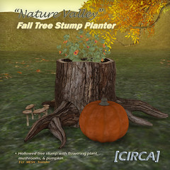 "@ SOS Event - [CIRCA] - ""Nature Valley"" - Fall Tree Stump Planter"