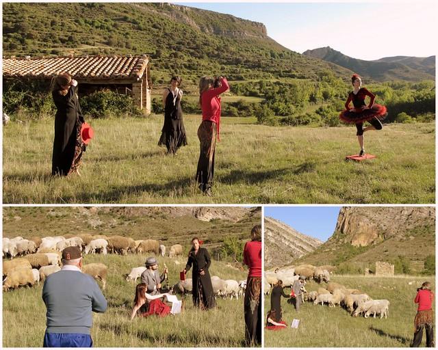 Entre ovejas ~ makin off