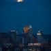 Blue Moon (201208310019HQ) by NASA HQ PHOTO