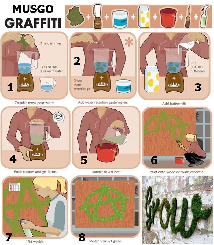 Graffiti de musgo_instrucciones