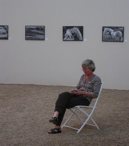 Xardín de Luxemburgo (París). Exposición de Anne Sargeant