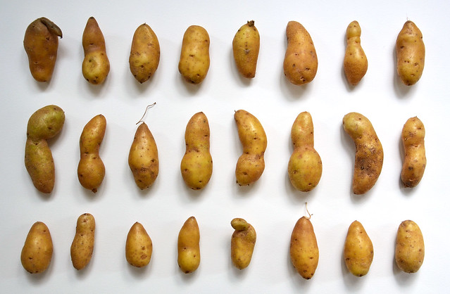 collections | potatoes