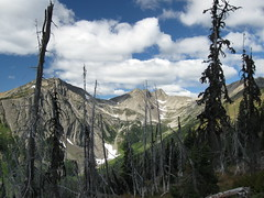Looking up Big Face Basin.  Joker Mt. at left.