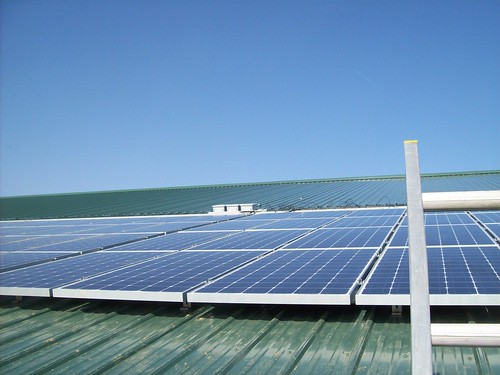 Rising Star Farms | Solar Installation