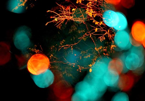 Bokeh Night