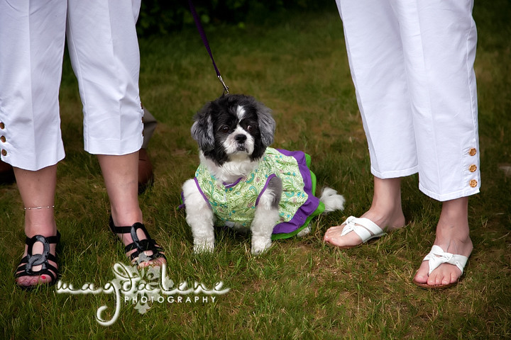 door-county-wi-wedding-photos9