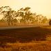 Biking the Victoria Highway, Northern Territory by worldbiking.info