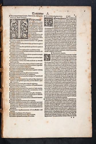 Woodcut initials in Serapion, Johannes, the Elder: Breviarium medicinae