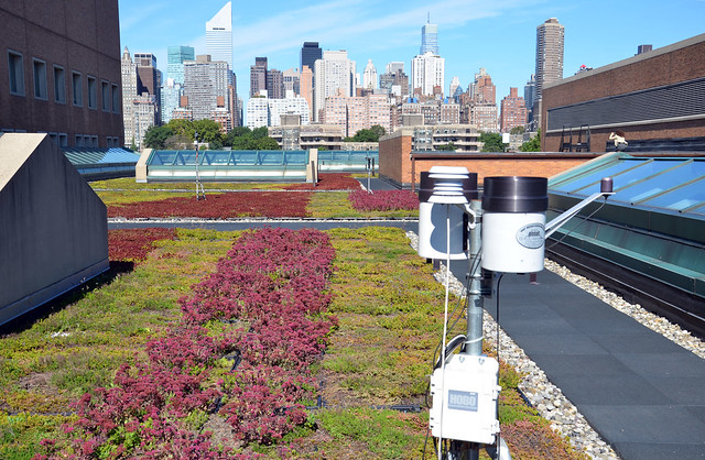 Con Edison is monitoring the performance of the extensive green roof on its Queens training center in collaboration with Columbia University.  Photo by Tara Thayer