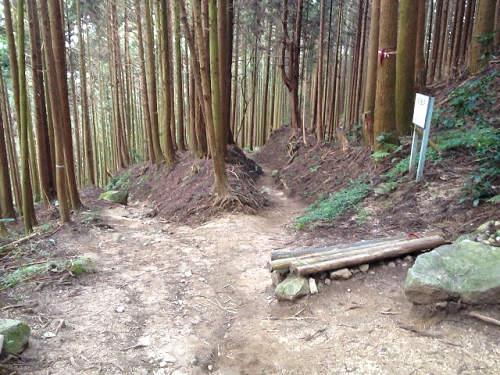 金剛山登山(高天彦神社から)-15