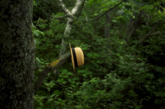 hattupieni