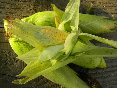 Sweetcorn Sweet Bounty