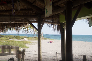 View, Sharky's on the Pier, Venice, FL, Restaurant Review