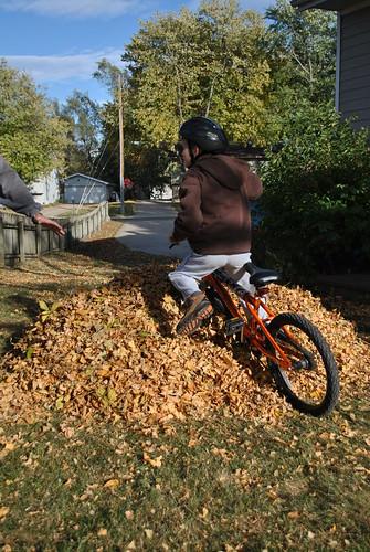 autumn antics 192