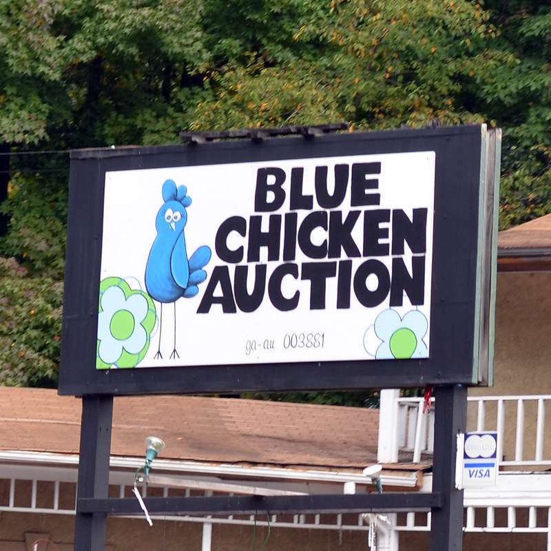 Blue Chicken Auction