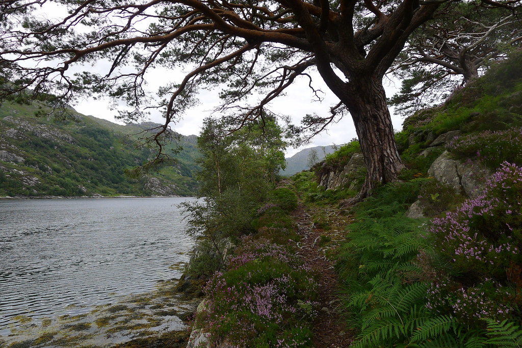 The path beside Loch Hourn