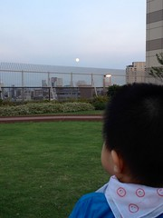 満月ととらちゃん (2012/8/31)