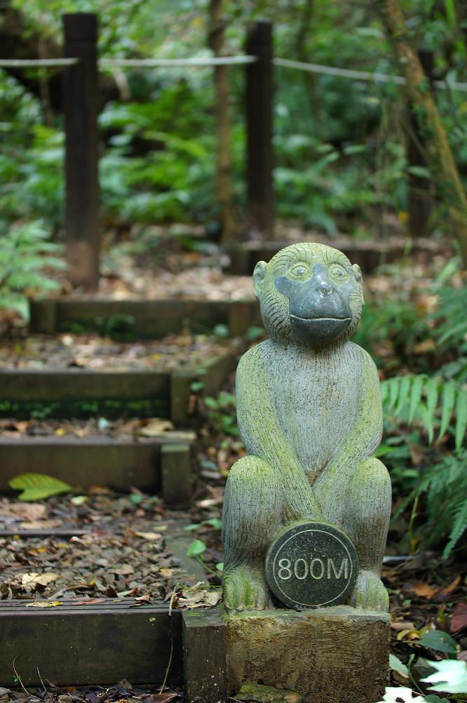 猴洞步道-20