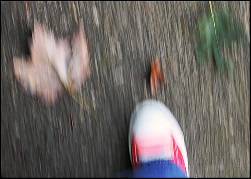 A Walk 1/365