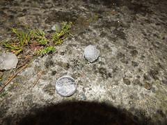 20120904 hail