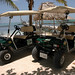 Boaz Golf Cart Rentals 7