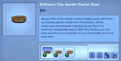 Brittany's Tiny Garden Planter Bowl
