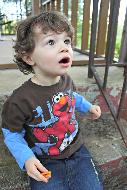 Elmo shirt from CookiesKids