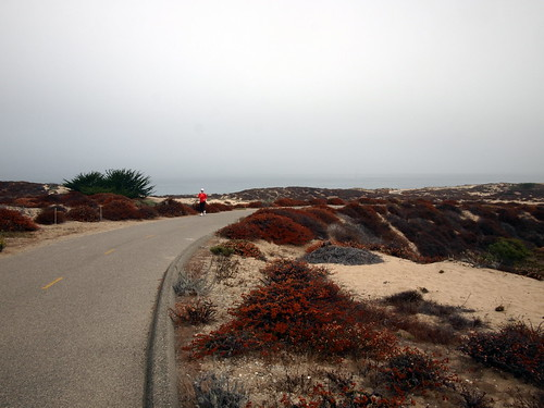 Monterey Recreational Path