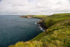 Headland view near Port Quin
