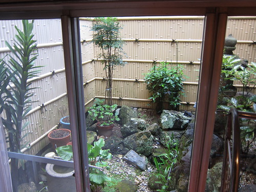 Our room's plastic garden in Nagoya