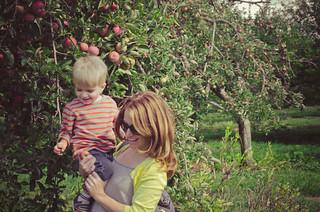 Apples-0163