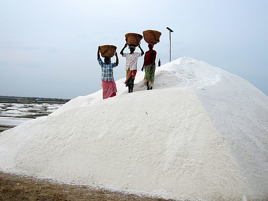 paticheri_marakkanam_salt_ (6)