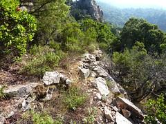 Entre le col de la pointe 571 et le ruisseau avant le Valdu Grande : le sentier après le col (avant démaquisage !)