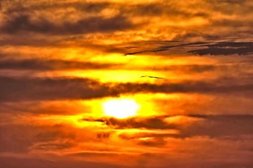morning sun sunrise