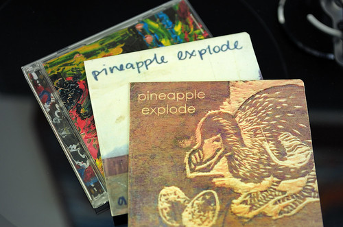 Pineapple Explode CDs