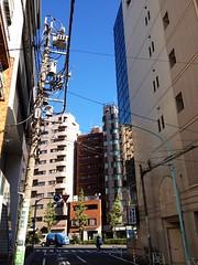 朝散歩 (2012/8/27)