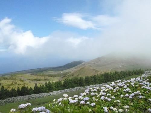 pico-norte