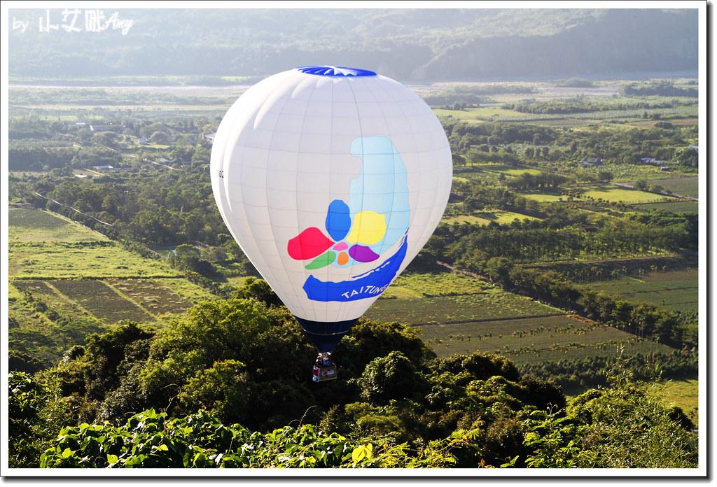 台東鹿野熱氣球嘉年華IMG_3187