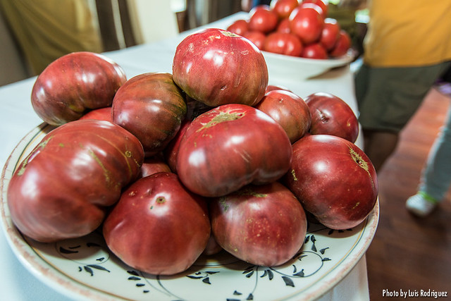 Tomates Carabaña-22