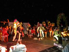 Gala Anual 2010
