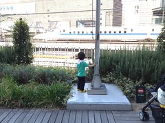 交通会館で新幹線をみるとらちゃん(妻撮影)