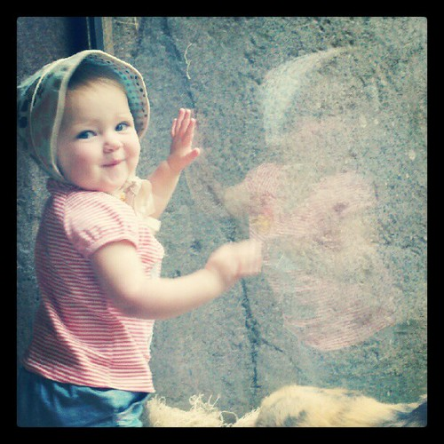 Birthday girl loooved the zoo!!