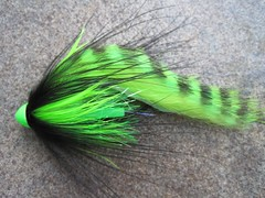 mahi sandwich tube fly