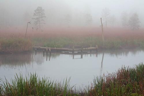 fog northcarolina brunswickcounty sturgeoncreek