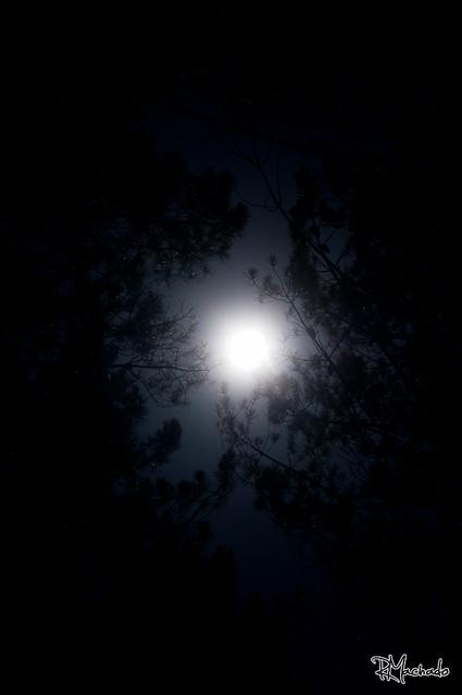 Lua azul II