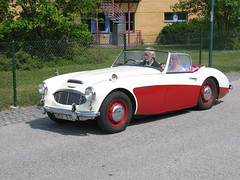 morgan +4(0.0), ac ace(0.0), austin-healey sprite(0.0), race car(1.0), automobile(1.0), vehicle(1.0), austin-healey 100(1.0), austin-healey 3000(1.0), antique car(1.0), classic car(1.0), vintage car(1.0), land vehicle(1.0), convertible(1.0), sports car(1.0),